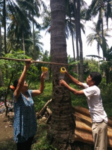 Villagers hanging their solar lamps out to charge their batteries