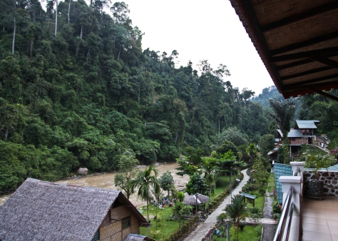 Bukit Lawang is the gateway village to Gunung Leuser National Park and the Bohorok River is the only thing that separates mankind from the wilderness