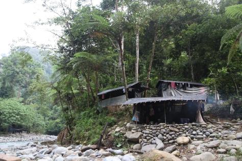 A campsite in Gunung Leuser National Park