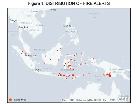 In the space of seven days, Indonesia received 174 fire alerts, 42 percent occurring on indicative moratorium areas. Courtesy of Global Forest Watch.